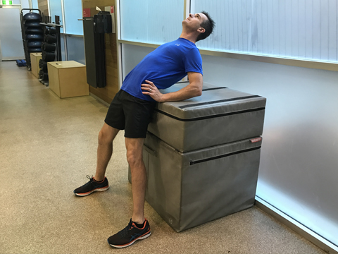 physio rehab  exercise library  lumbar spine  core